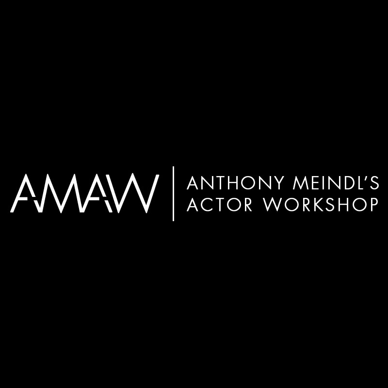 Anthoney Meindl Actor Workshop Logo